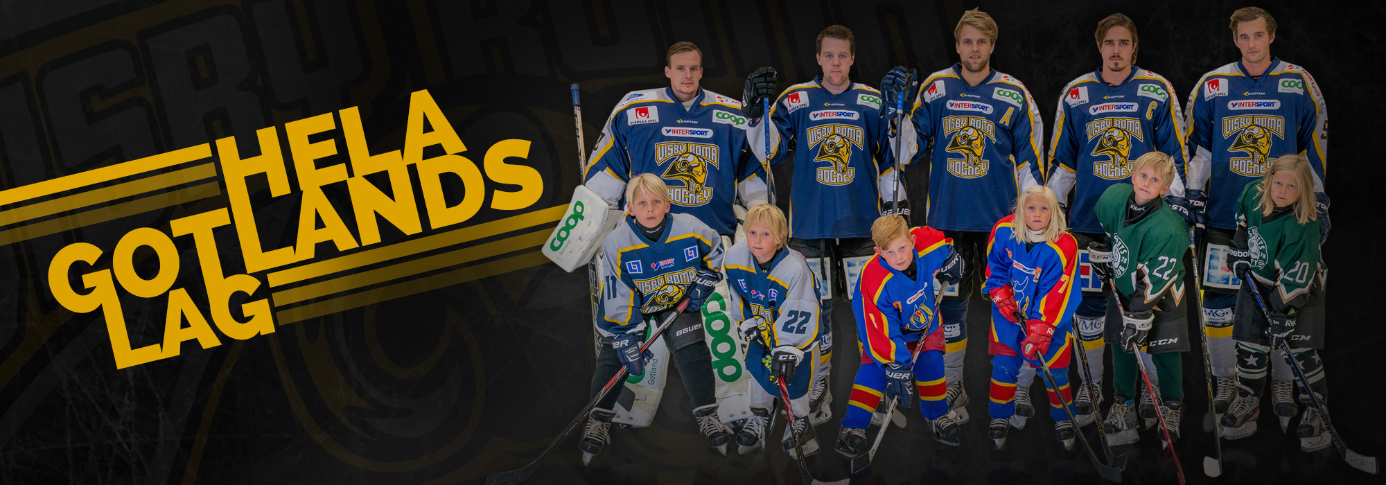 Summary -  Visby Roma Hockey Hela Gotlands Lag 0009dd980d33b